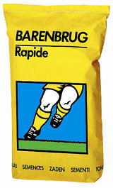 Zak Rapide